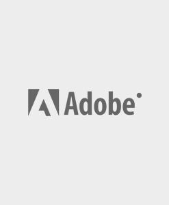 Adobe Analytics Developer ACE