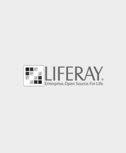 Liferay Certified Professional Developer